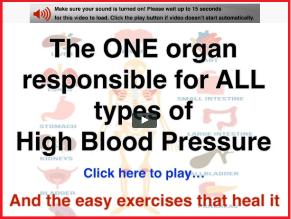 One organ responsible for bp