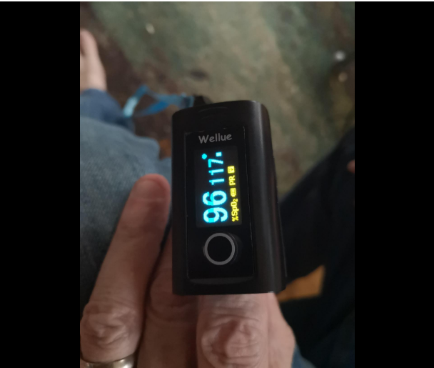 The Wellue Fingertip Blood Oxygen Saturation Monitor